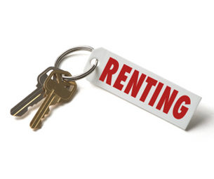 Renting Arrendamiento Financiero